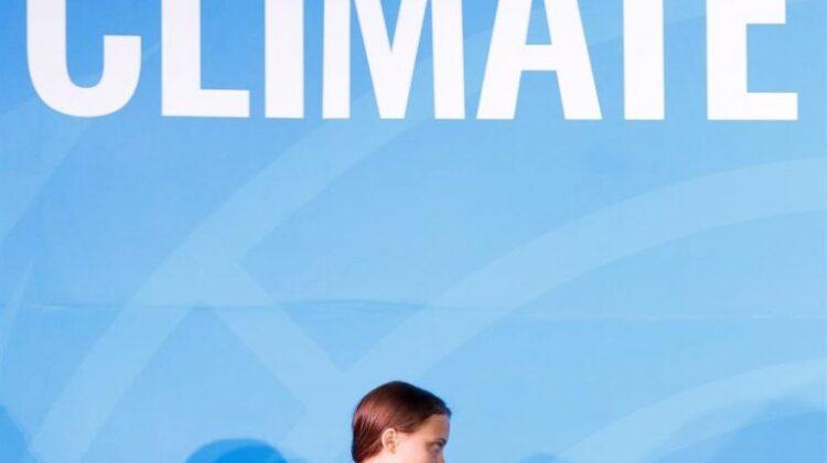 """La """"Cruzada de niños"""" de Greta dirigida a la privatización de la naturaleza"""